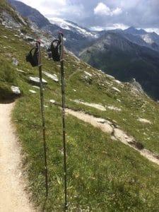 leki TrailStick Vanoise